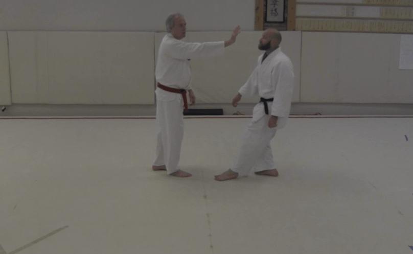 Aikido - Drop Step